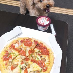 選挙に行ったらピザ食べよう!