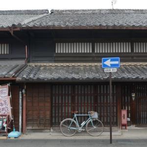 犬山・圓明寺のしだれ桜ポタ