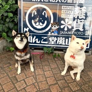 そうだ!おともだちにあいにいこう♪~京都 嵐山~