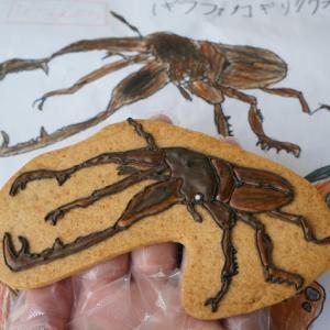 M君とのMjucaのコラボアイシングクッキー!!