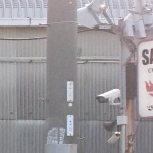 SAKKY'S COLLECTIONS (大阪府 大阪モノレール 南摂津駅)