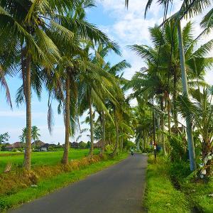 緑豊かな神秘の島 バリ島での生活①