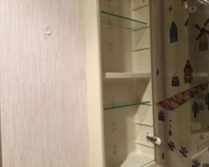 洗面所。収納とお掃除。