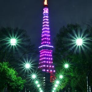 東京タワー 夜編