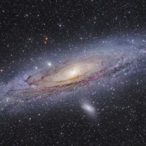 池田先生「来世は地球とは限らない」