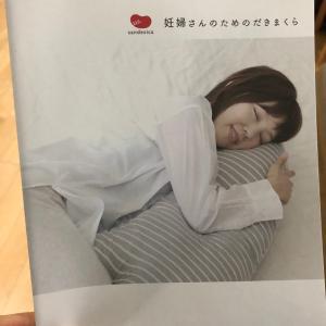 妊娠4ヶ月 抱き枕を購入