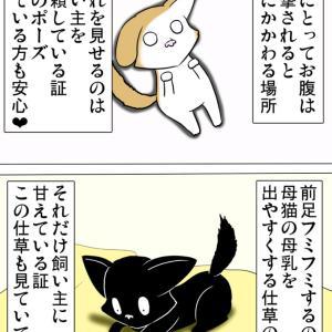ほのぼの・猫の日常4コマ漫画「ミーのおもちゃ箱」その1356