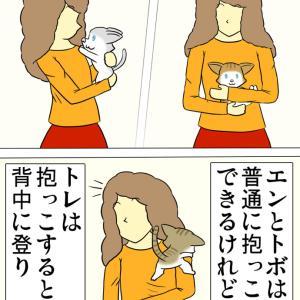 ほのぼの・猫の日常4コマ漫画「ミーのおもちゃ箱」その1379