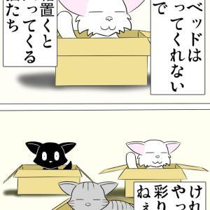 ほのぼの・猫の日常4コマ漫画「ミーのおもちゃ箱」その1381