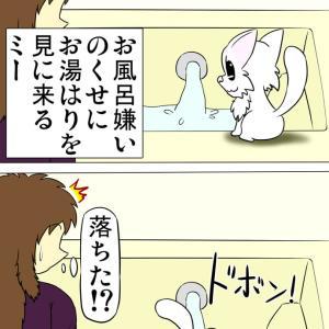 ほのぼの・猫の日常4コマ漫画「ミーのおもちゃ箱」その1413