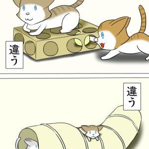 ほのぼの・猫の日常4コマ漫画「ミーのおもちゃ箱」その1414