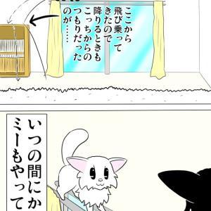 カーテンレールの上で追い込まれる猫