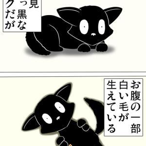 黒猫のエンジェルマーク