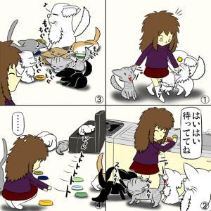 猫のご飯あるある