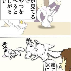 本当に鋭い猫達