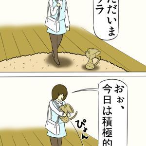 自動給餌器と挟まる猫と止める猫と