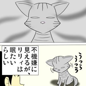 ほのぼの・猫の日常4コマ漫画「ミーのおもちゃ箱」その1322