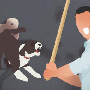 【済州島】「隣の犬が吠えてムカつく・・・」~腹立ちまぎれに一線を越えた男