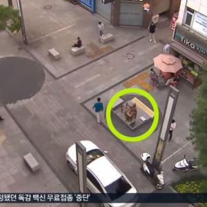 ソウルの慰安婦像は「違法」と告発 撤去の可能性=韓国ネット「慰安婦像は韓国の歴史」「区庁の中庭に設置すればいい」
