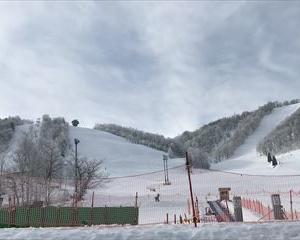 3月7日(日)飛騨ほおのき平スキー場(今シーズン20日目)