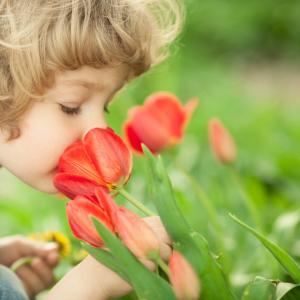 95%が回復!世界の医師が推進する「嗅覚障害療法」とは?