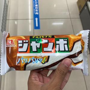 シンガポール記者「最高のアイス見つけた」 #画像    どこでも有るって訳でもないのか     すげえ小さくなったよな