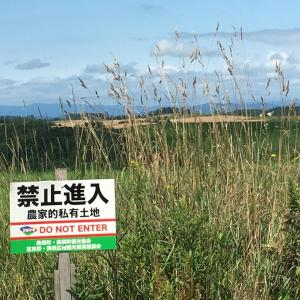 韓国さん「北海道の観光産業がヤバそう」 |  朝鮮だけじゃなくて中国の連中も来なくなるといいのにな…  |  まだたまにいるんだよなあ