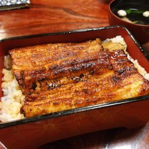 韓国土用の丑の日(伏日/ポンナル)は参鶏湯!