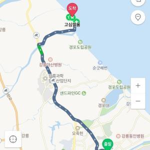 ソウルからサクッとKTXで江陵1泊2日旅行【4】青い海が一望できるカフェ고씸살롱