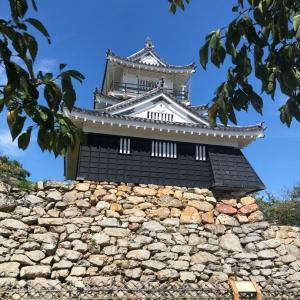 浜松城からのコストコへ。