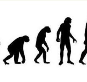 進化論はとかく誤解されやすい
