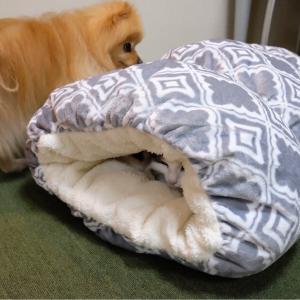 大人気!!ペットがダメになるベッド