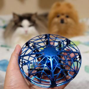 空飛ぶドローンオモチャを犬と猫に見せてみた