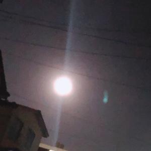 お月さまが綺麗な夜☆*:.。. o