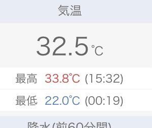 初めての茄子育〜自然のままが1番うまくいく〜本日も30度超え☆*:.。.