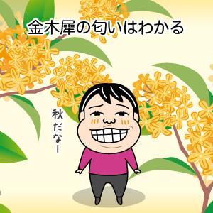 花に疎い私でも