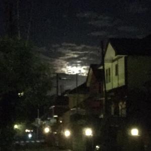 お月さんを探せ!