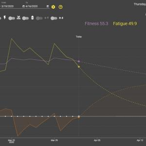 3月のラン by 45歳からのフルマラソン挑戦