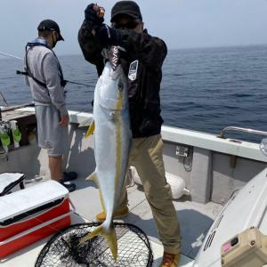 最近の釣果写真