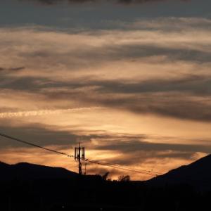 夕焼けの空から・・・ツバメの塒入り