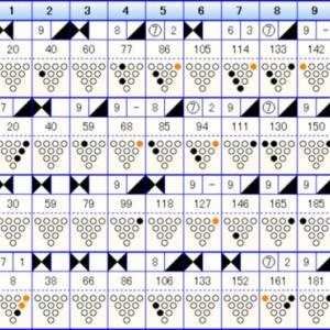 ボウリングのリーグ戦 (411)