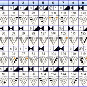 ボウリングのリーグ戦 (413)