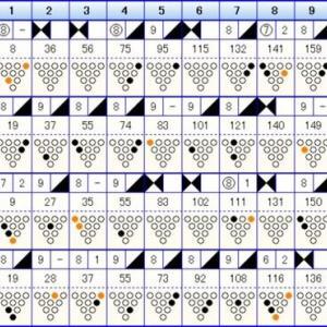 ボウリングのリーグ戦 (391)