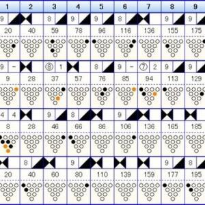 ボウリングのリーグ戦 (395)
