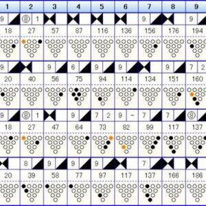ボウリングのリーグ戦 (406)