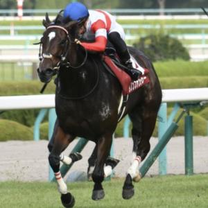 [秋華賞2019]予想オッズ・出走予定馬とデータ予想!ダノンファンタジーは危険な気がしています。
