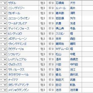 【菊花賞 2019】血統最終予想・最後の1冠はどの馬?最終予想買い目発表!!