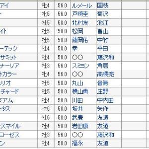 【天皇賞秋 2019】出走馬全頭血統診断・2強対決、伏兵馬台頭はあるのか?
