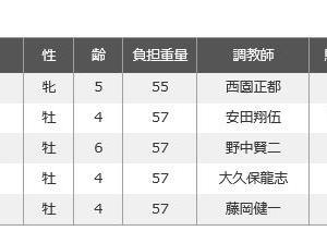 【JBCクラシック 2019】血統展望・出走予定馬/予想オッズ、年に1度のダートの祭典!!