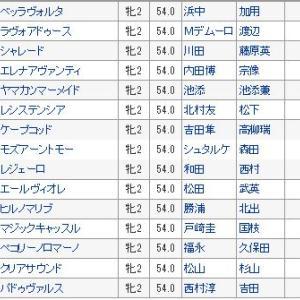 【ファンタジーステークス 2019】血統予想・枠順確定/単勝オッズ、いざ阪神JFへ!!